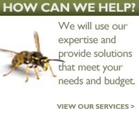 Pest Control Experts Northumberland